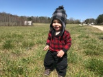 Tucker walking dandelion